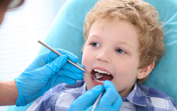 Oral Health Services