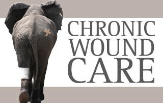 wound care manual keryln carville buy